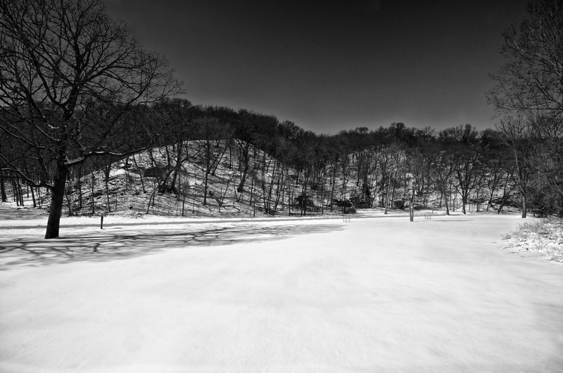 Snow by the River #133147 BW