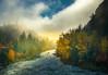 Sun Breaking Through On River Bank - Leavenworth, Central Washington, WA