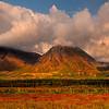 Mix Of Light And Shadow - Denali National Park, Alaska