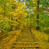 A Stairway To Autumn