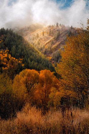 A Break In The Weather As Top Of The Hills Get Sun - Maroon Bells-Snowmass Wilderness, Aspen, Colorado