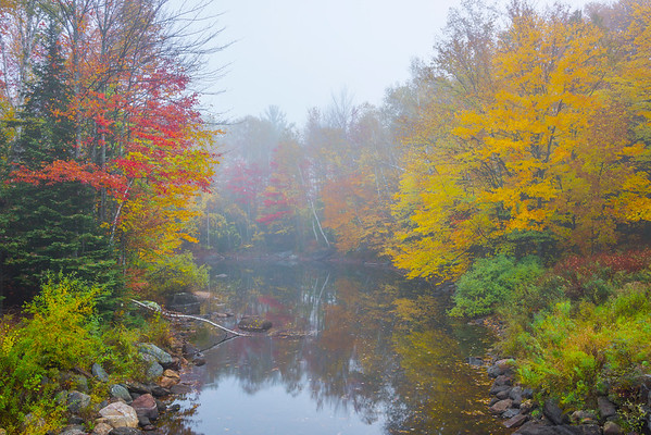 A Little Hidden Cove Of Autumn Treasure - Vermont
