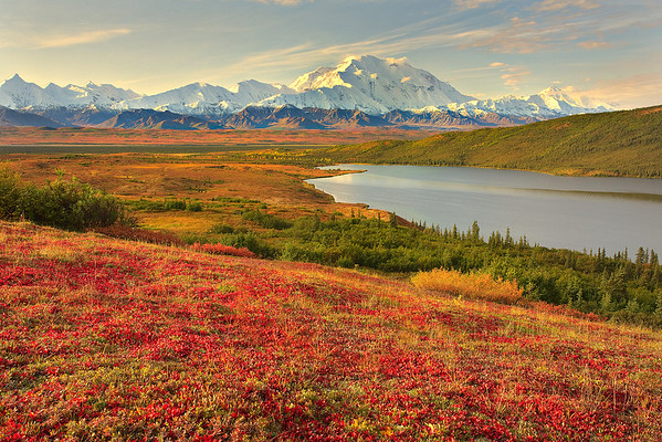 Across The Valley Of Denali - Denali National Park, Alaska