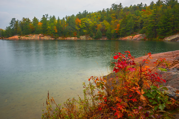 Fall Foliage Along The Lake Shore - Algonquin Provincial Park, Nipissing, South Part, Ontario, Canada