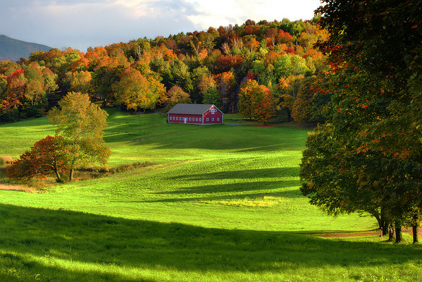 Secluded On A Hilltop  - Vermont