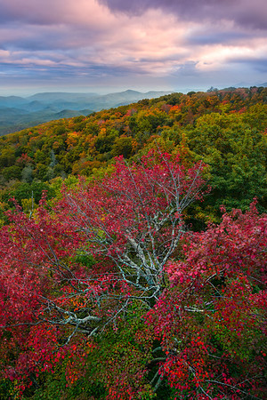 The Blue Ridge Parkway - Great Smoky Mountain Region, North Carolina_16
