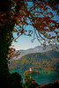 Hanging Fall Foliage Framing Lake Bled Castle - Lake Bled, Bled, Slovenia