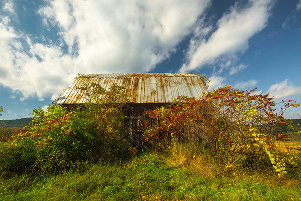 Abandoned And Full Of Color - Near Buttermilk Falls State Park, Finger Lakes Region, Upstate NY, NY