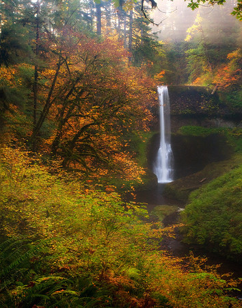 A Break Of Light Over The Falls - Silver Falls State Park, Oregon