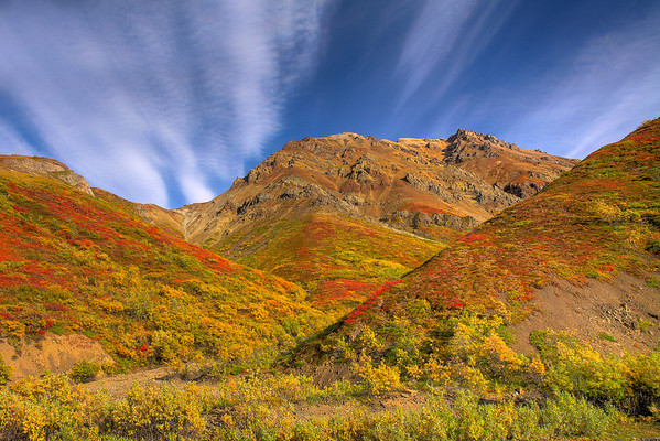 Changing Colors Of The Valley - Denali National Park, Alaska
