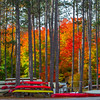 Forests Of Color With Canoes - Algonquin Provincial Park, Nipissing, South Part, Ontario, Canada