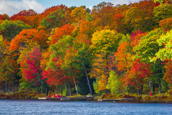 Glorious Colors Abound At The Lake