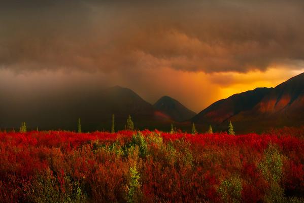 Storm Passing Over the Alaskan Peaks - Boundaries Of Denali National Park, Alaska