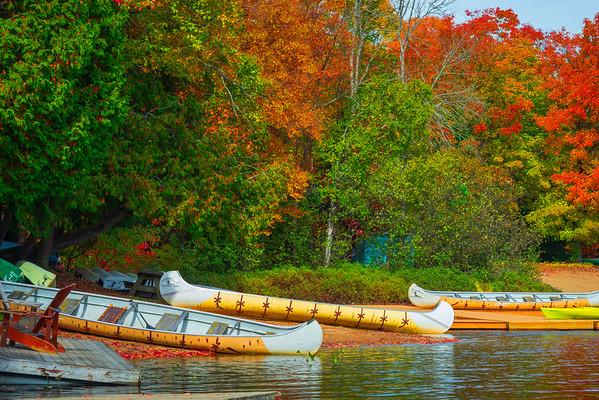 Shoreline Access To Canoeing - Algonquin Provincial Park, Nipissing, South Part, Ontario, Canada