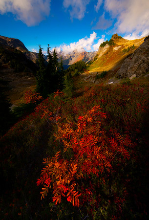 First Morning Light On The Autumn Hills - North Cascades National Park, WA