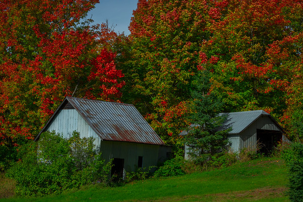Tucked Away In A Corner Of Color - Huntsville, South Part, Ontario, Canada