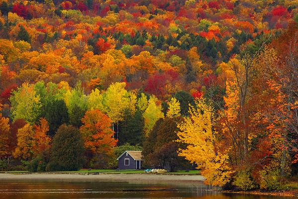 Peak Color Lakeside  - Vermont