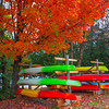 Autumn In Full Glory In Algonquin - Algonquin Provincial Park, Nipissing, South Part, Ontario, Canada
