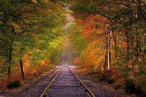 Pathway Of Light - New Hampshire