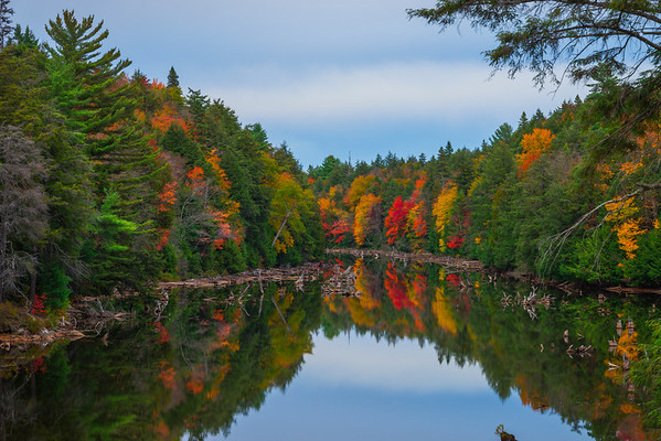 Looking Down The Mouth Of The River - Algonquin Provincial Park, Nipissing, South Part, Ontario, Canada