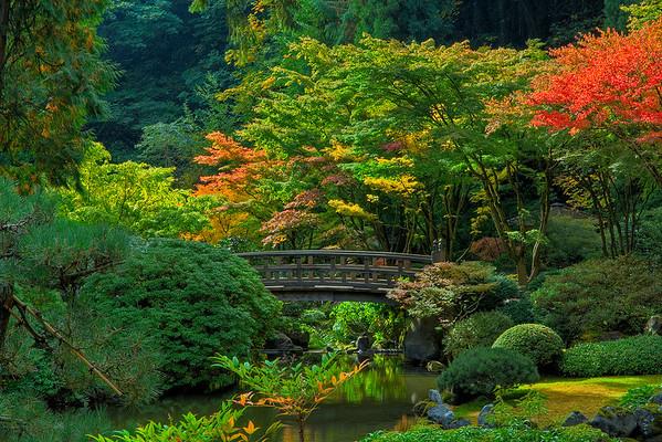 Idyllic Moments Of Color - Portland Japanese Garden, Oregon