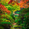 Colors That Surpass Expectations - Portland Japanese Garden, Oregon St
