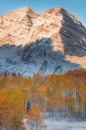 Maroon Bells And Yellow Stand Of Trees - Maroon Bells-Snowmass Wilderness, Aspen, Colorado