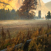 As The Mist And Fog Rises Throughout Yosemite Valley - Lower Yosemite Valley, Yosemite National Park, CA