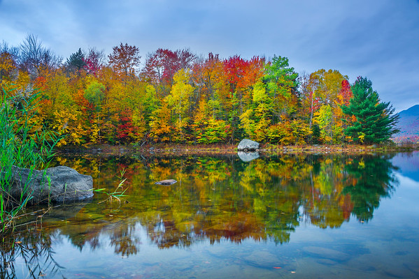 At The Edge Of The Lake During Autumn Peak - Vermont