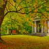 Late Autumn Tribute - Vermont