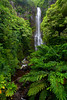 Kipahulu, Ohe'o Gulch, Seven Sacred Pools, Haleakala National Park, Maui, Hawaii