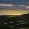 Rolling Light Over The Palouse Hills - The Palouse Region, Washington