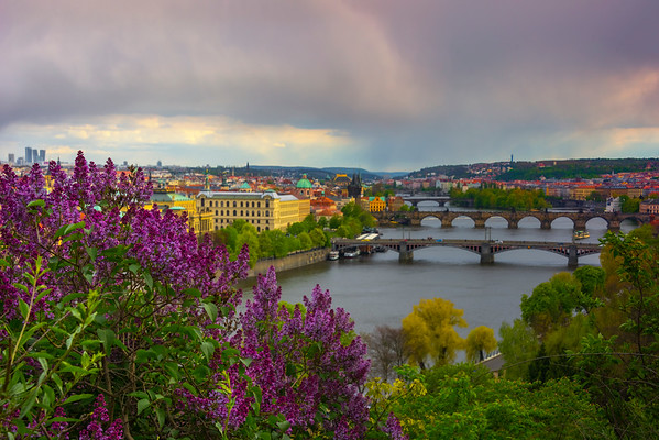Gardens Of Letenske Overlooking Bridges Of Prague