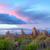 Pinks And Greens - Mono Lake, Lee Vining, Eastern Sierras, California