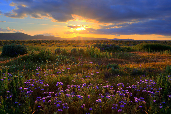 The Magic Of Light - Carrizo Plain National Monument, California