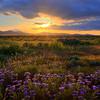 The Magic Of Light - Carrizo Plain National Monument, California