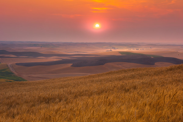 Sunset From Low Level Of Steptoe - Steptoe Butte State Park, Palouse, Eastern Washington