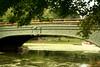bridge scene2214