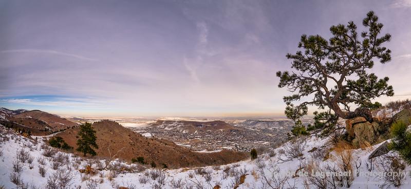 Mount Galbraith Golden vista