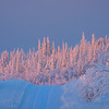 The Road To Sunset -Ester Dome, Fairbanks, Alaska