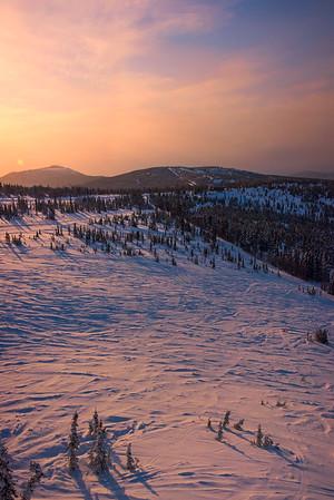 Last Light Across The Meadow -Fairbanks, Mt Aurora Skiland, Alaska