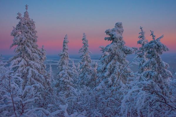 Horizon Reds Overlooking Fairbanks -Ester Dome, Fairbanks, Alaska
