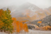The Obscurity Of Autumn Falling Into Winter - Maroon Bells-Snowmass Wilderness, Aspen, Colorado