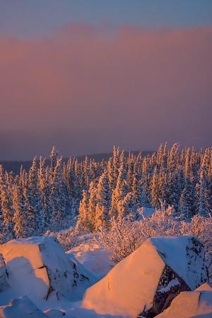 Rocks And Elements Of Last Light -Ester Dome, Fairbanks, Alaska