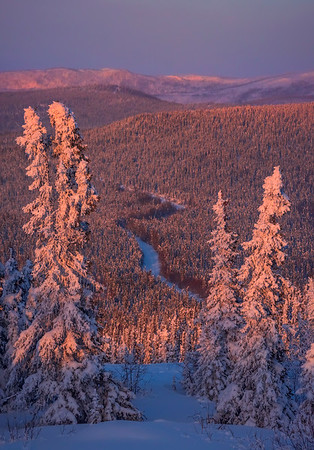 Framed Access To Hill Top -Fairbanks, Mt Aurora Skiland, Alaska
