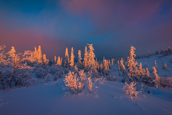 A Touch Of The First Light -Ester Dome, Fairbanks, Alaska