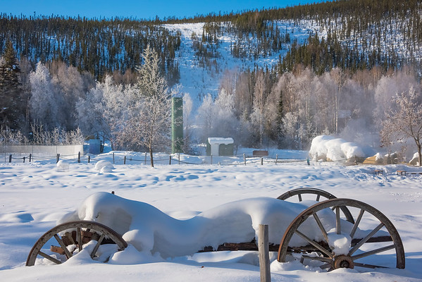 A Winter Morning Relic -Chena Hot Springs Resort, Fairbanks, Alaska