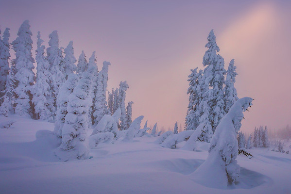 Sun Begin Its Descent On The Winter Snow - Paradise Area, Mount Rainier National Park, WA