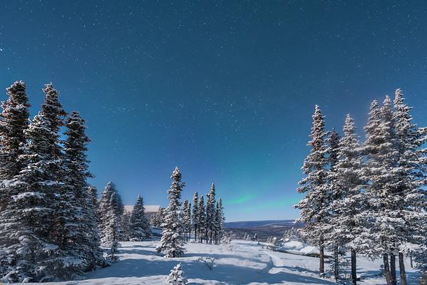 The Road To The Cabin -Mt Aurora Skiland, Fairbanks, Alaska