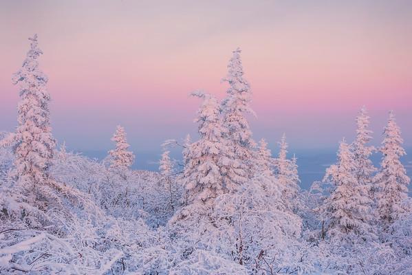 Statues Of Twilight Color -Ester Dome, Fairbanks, Alaska